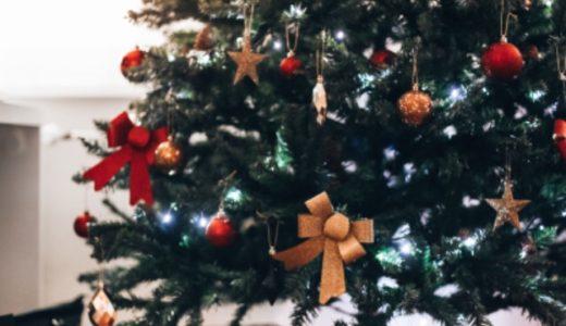 大人になってもクリスマスにサンタクロースが来ることを知りました。